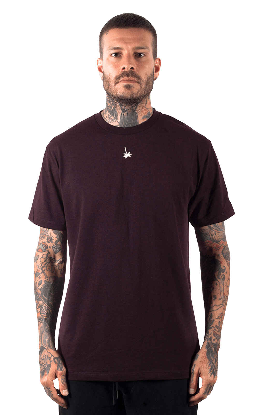 Camiseta_Hollywoodogz_SangriaHTR_Frente